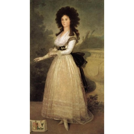 Francisco José de Goya -portrait of Dona Tadea Arias de Enríquez-Art gallery oil painting reproductions